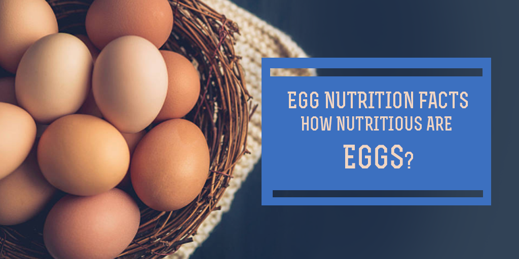 Egg Nutrition Facts - How Nutritious are Eggs? Buy Medicine Online, Online Pharmacy Noida, Online Medicines, Buy Medicine Online Noida, Nearby Pharmacy, Purchase Medicine Online, GoMedii