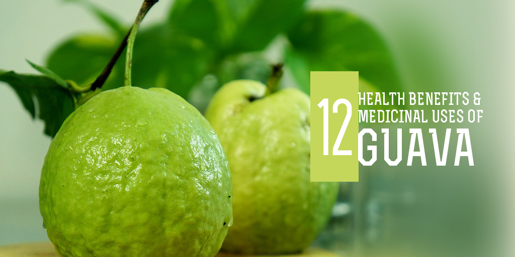 12 Health Benefits and Medicinal Uses of Guava, Buy Medicine Online, Online Pharmacy Noida, Online Medicines, Buy Medicine Online Noida, Nearby Pharmacy, Purchase Medicine Online, GoMedii