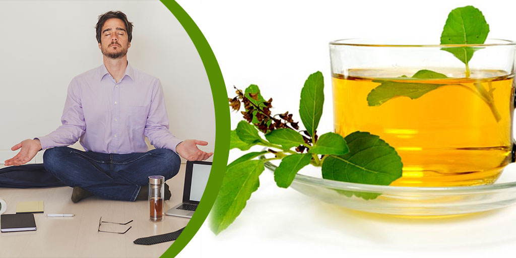 Benefits of Using Tulsi, Buy Medicine Online, Online Pharmacy Noida, Online Medicines, Buy Medicine Online Noida, Nearby Pharmacy, Purchase Medicine Online