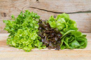 Lettuce- outbreak of E. coli, Buy Medicine Online, Online Pharmacy Noida, Online Medicines, Buy Medicine Online Noida, Nearby Pharmacy, Purchase Medicine Online, GoMedii
