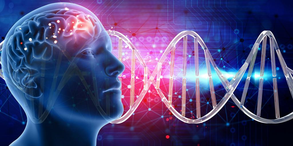 Encephalitis: Symptoms, Types, Risk Factors, Causes & Treatments