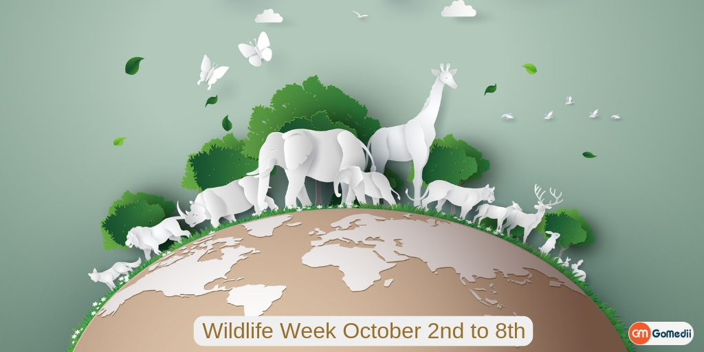 Wildlife Week 2018 (October 2nd-8th) in India, Medicines, Online Medicines, Order Medicine Online, Online Pharmacy, Buy Medicine, Purchase Medicine, Medicine Home Delivery, Pharmacy Near Me, Medical Store Near me, Fast Delivery of Medicine, Discount On Medicines, Book Appointment With Doctor, Online Doctor, Doctor Consultation Online, Second Opinion With Doctor