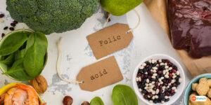 Know the Folic Acid Dosage For Seniors