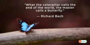 """""""What the caterpillar calls the end of the world, the master calls a butterfly."""" — Richard Bach"""