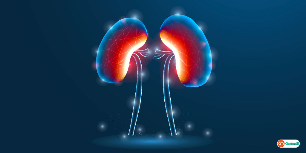 Are you Aware of These Which are Often Causes for Kidney Failure