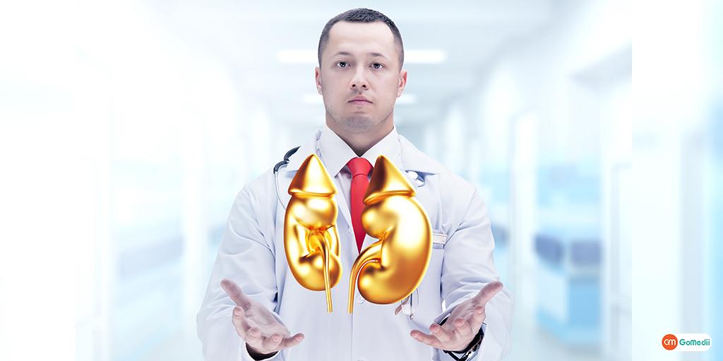 Glomerular Filtration Rate (GFR) Test For Kidney Wellness