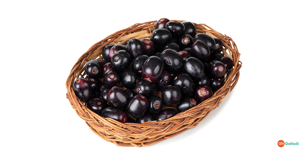 Jamun Seed for Diabetes Here's What You Want to Know
