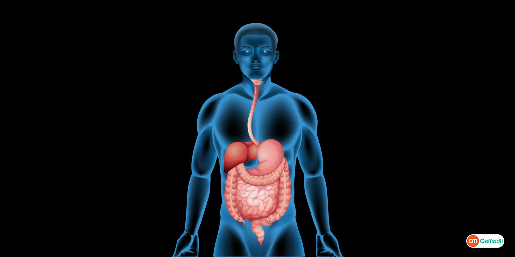 Disease of the digestive system You must know About!