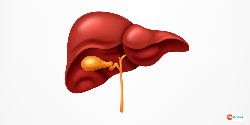 Hepatotoxicity A hepatic injury or damage by drugs