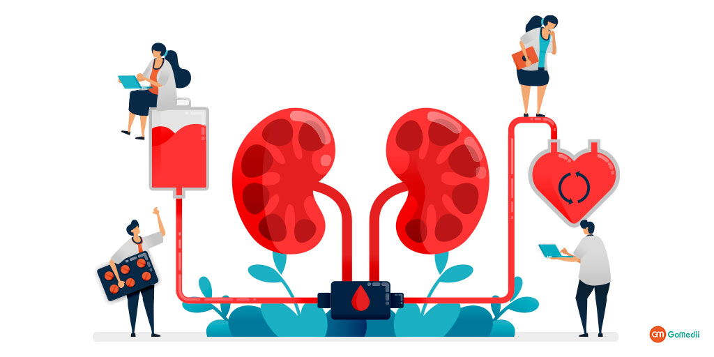 Know More in Detail About Stage 4 Severe CKD