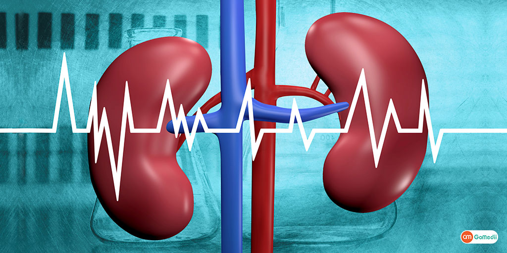 Know The Risk factors of CKD Before Gets Too Late