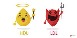 Different Types of Cholesterol The Good and the Bad