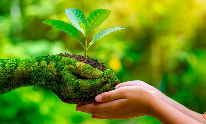 Pledging To Protect Nature On World Environment Day