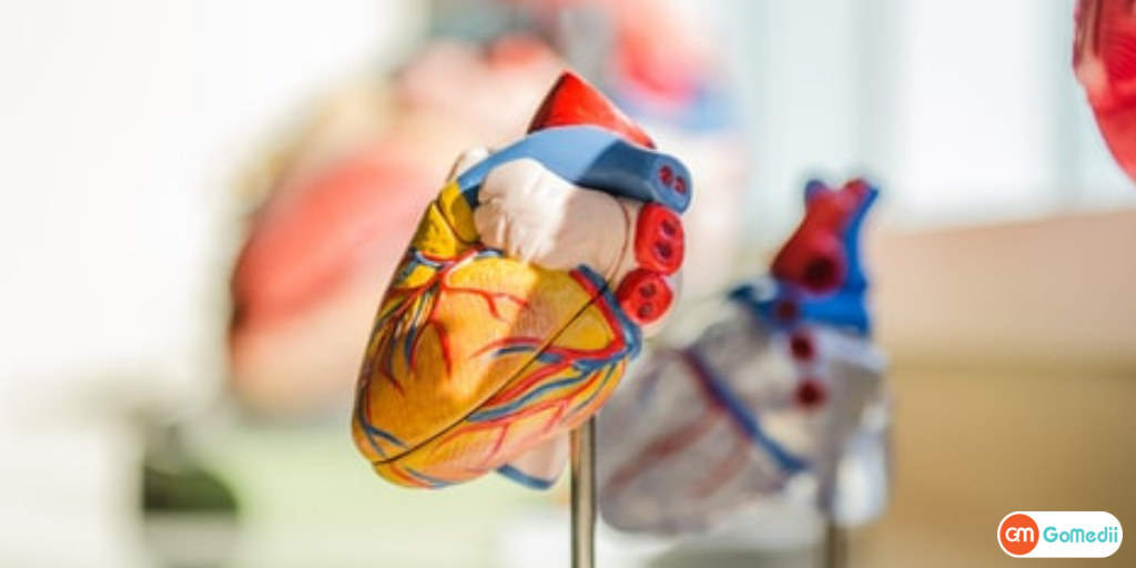 How Do I Get Cheaper Heart Blockage Surgery In India?-GoMedii